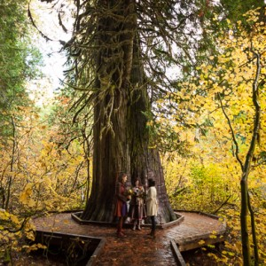 Mountain elopement photography Seattle