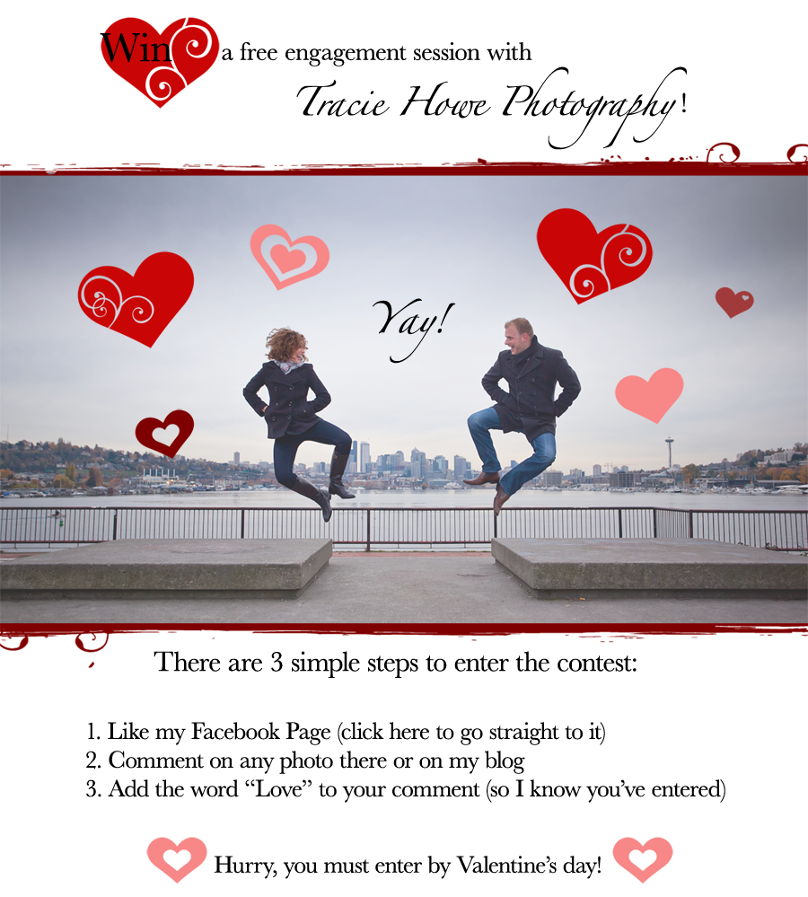 Win A Free Engagement Photo Session With Tracie Howe