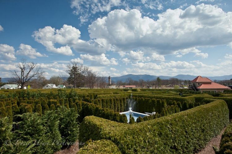 photo of hedge maze in Virginia by Luray Caverns