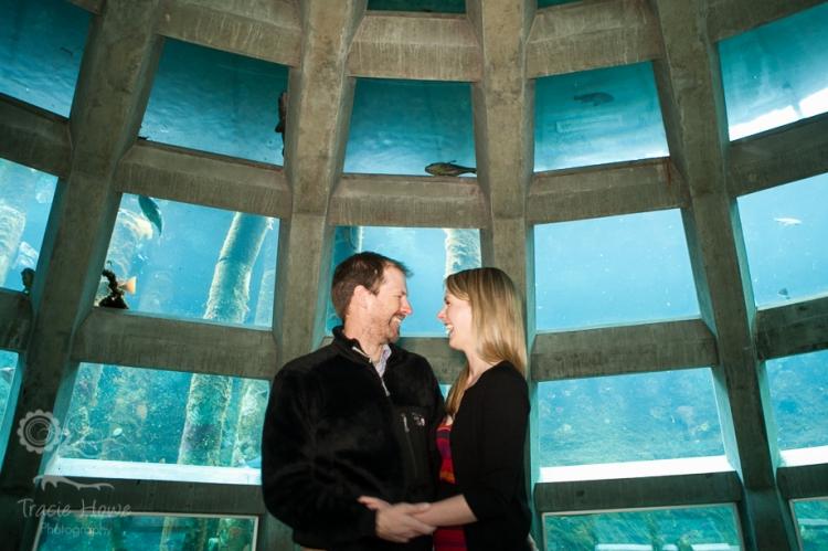 Seattle Aquarium engagement
