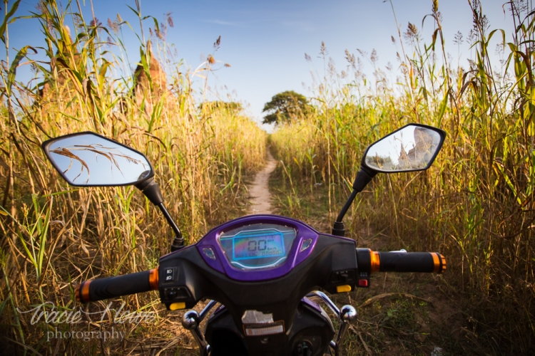 I loved these moments on tiny paths in Bagan amongst the temples and the fields of crops.